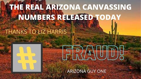 ARIZONA REAL CANVASSING NUMBERS OUT TODAY