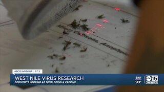 West Nile virus research underway