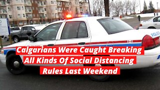 Calgarians Were Caught Breaking All Kinds Of Social Distancing Rules Last Weekend