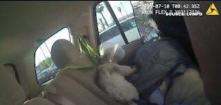 Las Vegas police rescue dog in hot car