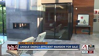 Unique energy-efficient mansion for sale