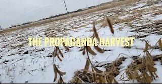 Harvest Lies?