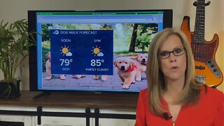 Dry start to weekend; storms possible Sunday
