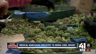 Medical marijuana industry to bring jobs, money