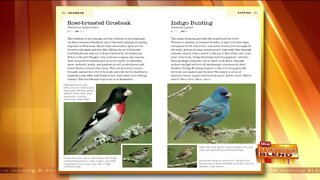 Enjoy the Birds of Wisconsin with a Brand New Field Guide!