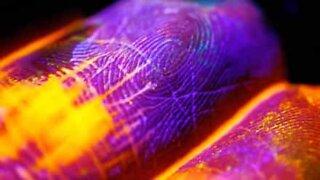 Fluorescent paint flows through skin like a river