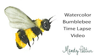 Watercolor Bumblebee Time Lapse Video