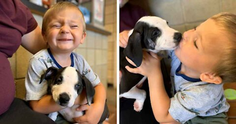 Boy With Cleft Lip Finds A Dog With Same Condition