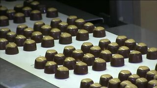 Malley's Chocolates plans reopen 7 locations