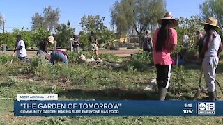 Community garden works to make sure everyone has food