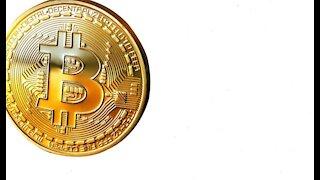 Elon musk tweets about bitcoin again