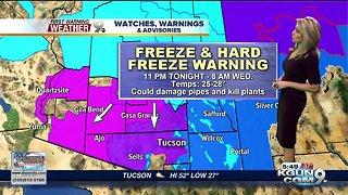 Hard Freeze Warning
