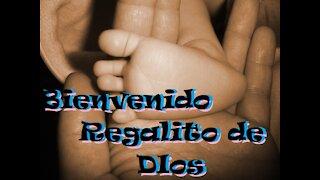 Bienvenido Regailto De Dios - Para Presentación De Bebes