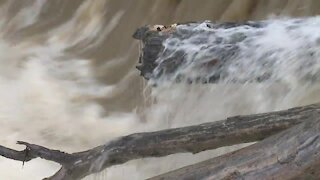 NWS issues River Flood Warning for Black River in Elyria