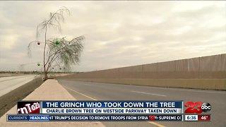 Charlie Brown Christmas tree taken down