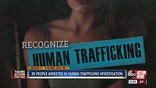 Hillsborough Co. human trafficking sting leads to 85 arrests