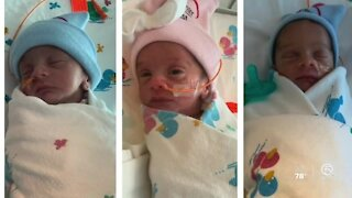 Births at Palms West Hospital have increased since October