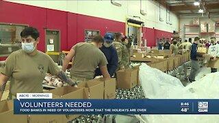 Food banks in need of volunteers post holiday season