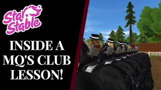 15 FREQUENTLY ASKED QUESTIONS ANSWERED! Star Stable Quinn Ponylord