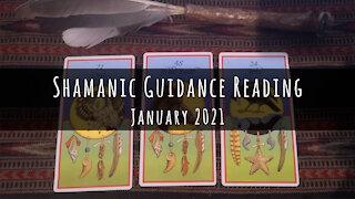Shamanic Guidance Reading for January 2021
