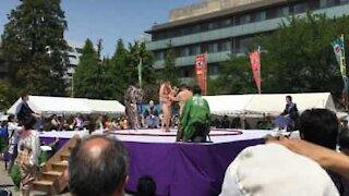 Lutadores de sumo competem para fazerem bebés chorar