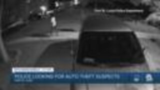 Auto theft suspects sought in Port St. Lucie