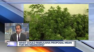 Legalizing Recreational Marijuana in Michigan: What's Included in Proposal?