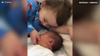 Este menino não larga a irmã recém-nascida