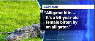 Woman injured after alligator attack
