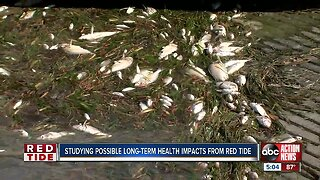 Health experts, researchers will study the long-term health impact of red tide on people