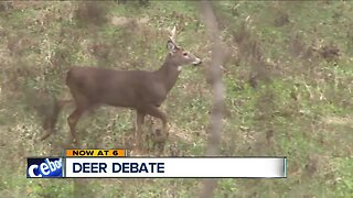 Shaker Heights program could allow deer hunters onto private property, with owner's permission