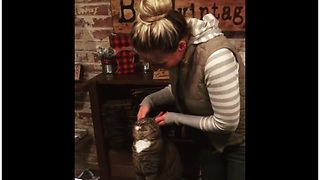 Cat loves the attention he gets from his owner