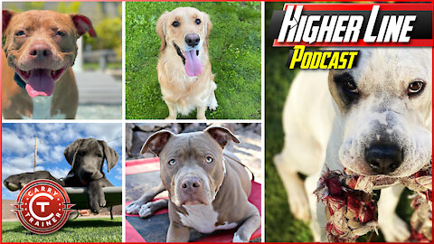 The Canine Connection | Higher Line Podcast #150