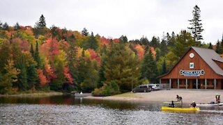 Ontario Is Giving Away Free Passes For Provincial Parks All Summer Long