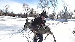 Sheriff Rescues Deer In Frozen Lake By Lasso