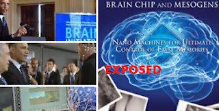 Nanomachines : Mesogens and Brain chips EXPOSED