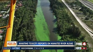 Latest water quality update in Southwest Florida