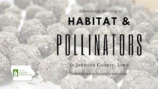 Iowa Outdoor Adventures - Pollinators & habitat