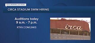 Circa Stadium swim hiring and holding auditions today