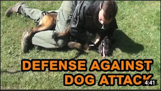 How to defense against a dog. Self defense against a dog attack