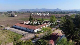 Viu Manent Valle de Colchagua wine tour in Chile