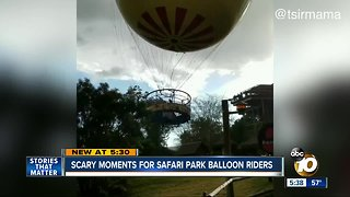 Scary moments for Safari Park Balloon riders
