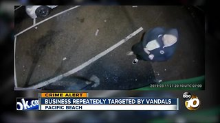 Pacific Beach business captures vandal on camera