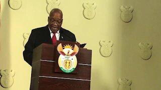 UPDATE 2 - Zuma resigns as SA president (VLf)