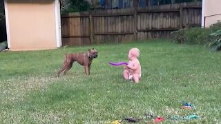Baby and puppy besties love playing outside together