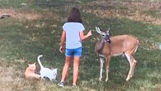 Texas girl shares beautiful bond with animals