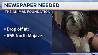 Animal Foundation needs newspapers