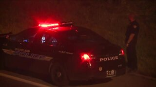 Police: 12-year-old wounded by stray bullet