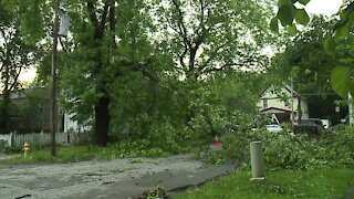 Excelsior Springs sees scattered damage from Friday storm