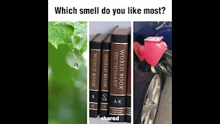 Which smell do you like the most? [GMG Originals]
